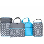Childress MaxiCOOL (4 Bottle Bag)  - Teal/Grey