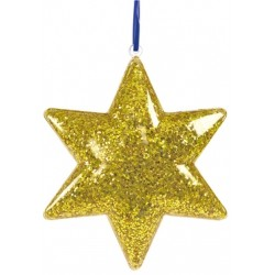 Colorations Clear Star Ornaments - Set of 1..