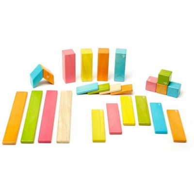 Tegu 24-Piece Set - Tints