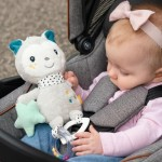Fehn Activity Cat With Ring