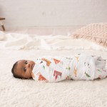 aden + anais Classic Swaddles 4-Pack - Around the World
