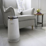 Beaba Air Purifier (BS Plug)
