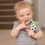 Sassy Baby Bend & Flex Ring Rattle
