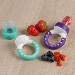 ClevaMama ClevaFeed Baby Fruit Feeder 2-Pack - Purple/Green 6m+