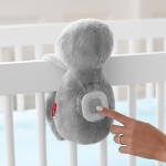 Skip Hop Cry-Activated Soother - Sloth