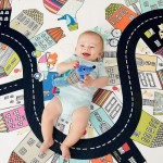 Skip Hop Doubleplay Reversible Playmat - Vibrant Village